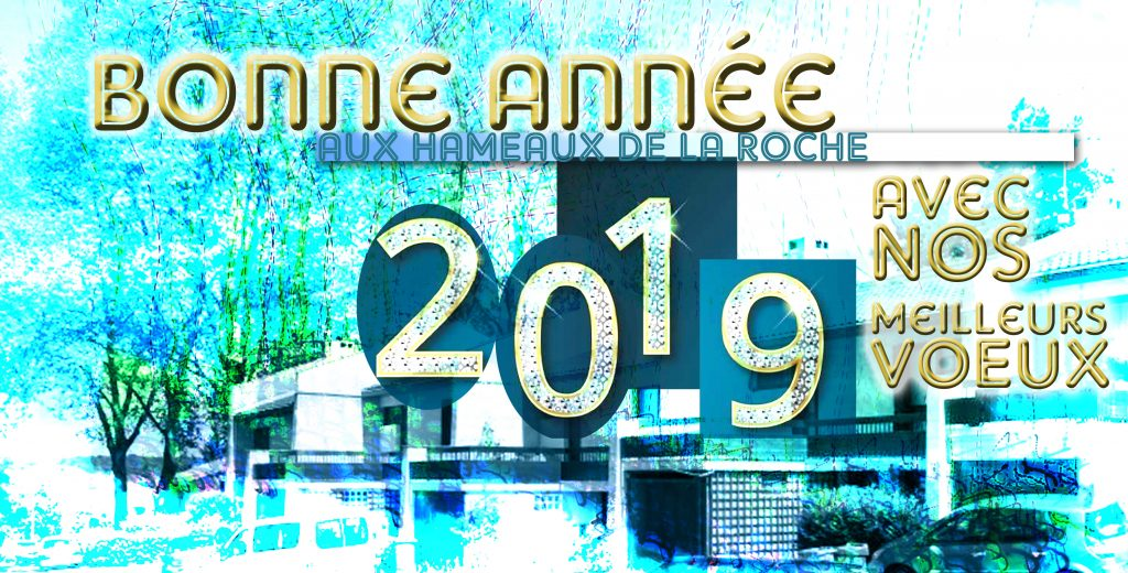 2019-01-06voeux2018version2