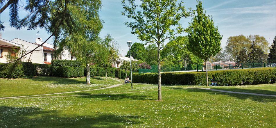 Espaces verts à proximité de la piscine