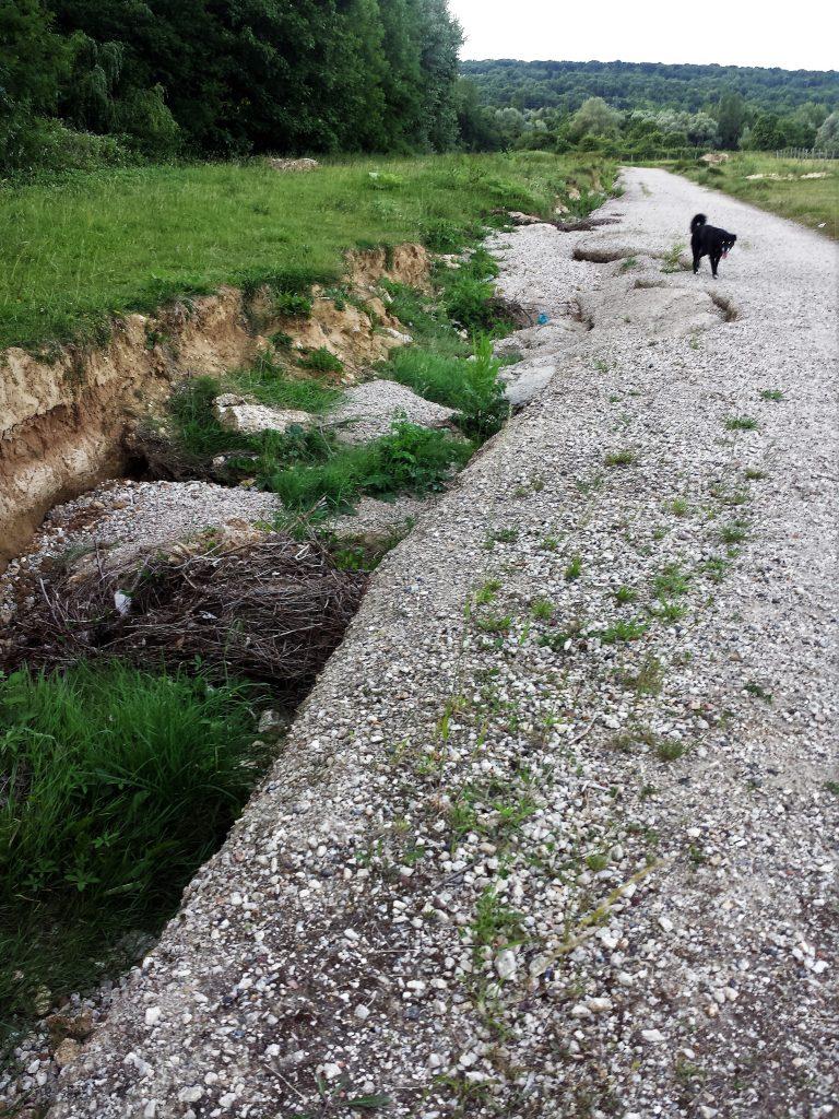 excavations-creusées par les crues du ru-sur-coulée-verte