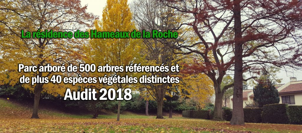 20171121_234625-40 espèces-arbres-texte2